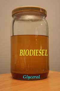 Jar of biodiesel