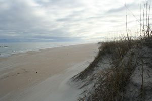 Cape Lookout in January
