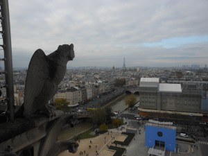 Notre Dame view 1