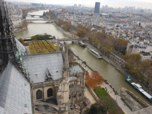 Notre Dame view 5