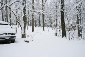 Snowpocalypse 2015 - 1